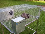 Цялостно автоматизирано оборудване за отглеждане на зайци 4